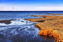 达里湖傍晚的沙滩