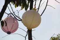 粉色灯笼与黄灯笼