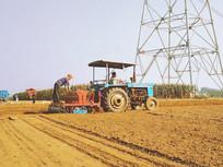 机器播种小麦