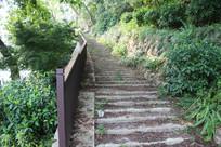白塔公园旁上山台阶