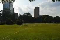 大草坪天空树木建筑