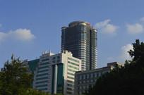 蓝天下绿树掩映的高楼大厦
