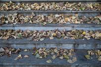 秋季落叶的大理石阶梯