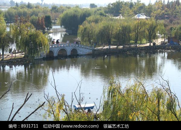 柳树下的石拱桥高清图片下载 编号8931711 红动网