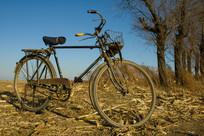 地头一辆老自行车