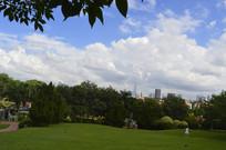 云台花园谊园草坪绿树