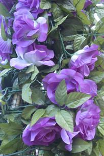紫色仿真月季花