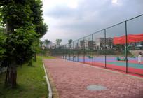 球场围档外校园绿化