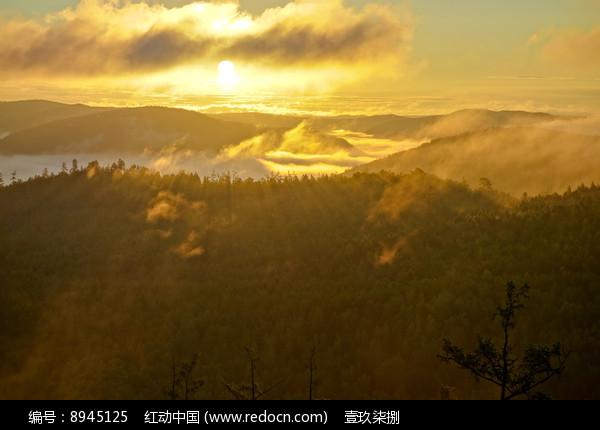 日出兴安岭图片