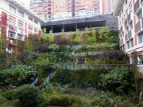 休闲场地的绿化