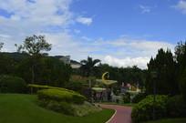 云台花园谊园树木灯组景观