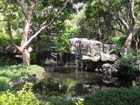 公园里的小池塘