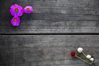 旧木板花朵背景素材