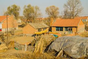 农家院风景