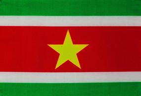 苏里南共和国国旗