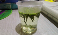 一次性杯子里的绿茶