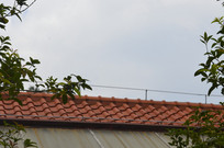 云台花园仿古建筑屋顶