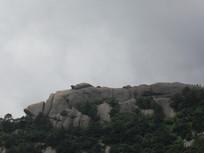 山顶的乌龟石