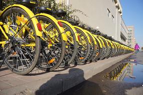 共享单车车轮