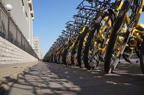 街边的共享单车停放点