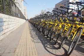 街头整齐的共享单车