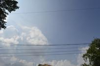 陈田花园蓝天白云风景
