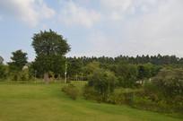 广州儿童公园大草坪景观