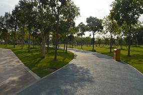 广州儿童公园道路绿化景观