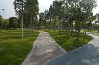 广州儿童公园绿道景观