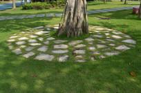 绿草地树干及石板排列的圆圈