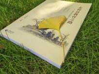 书本银杏叶