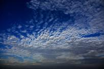 白色积云天空