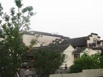 大树背后的徽派建筑