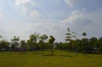 广州市儿童公园风景