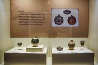 西夏文物展览柜