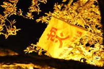 灯火掩映下的防火旗帜