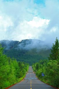 山路云雾山林风景