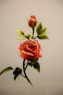 越南刺绣牡丹花
