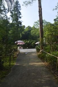 白云山公园绿道及遮阳伞座