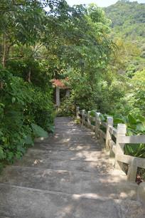 白云山石阶路绿树掩映的亭子