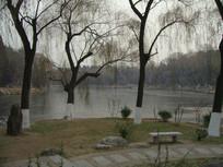 北京大学的未名湖