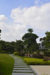 广州市儿童公园绿化道路