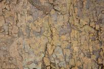 褐色的土地纹理背景