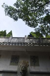 九龙泉石壁龙头雕塑