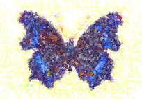 漂亮的蝴蝶无框画
