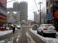 汽车压过的雪景
