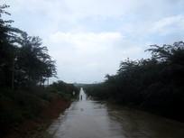 清镇农场道路