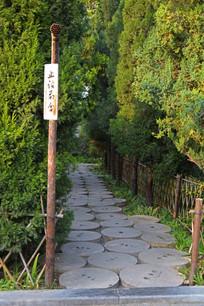 石磨盘铺成的小路