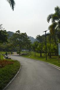 广州永泰公园绿道人行道