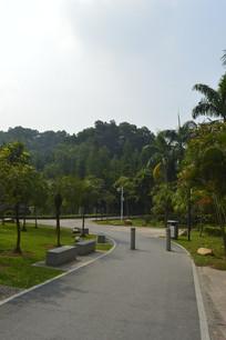 广州永泰公园曲折的绿道
